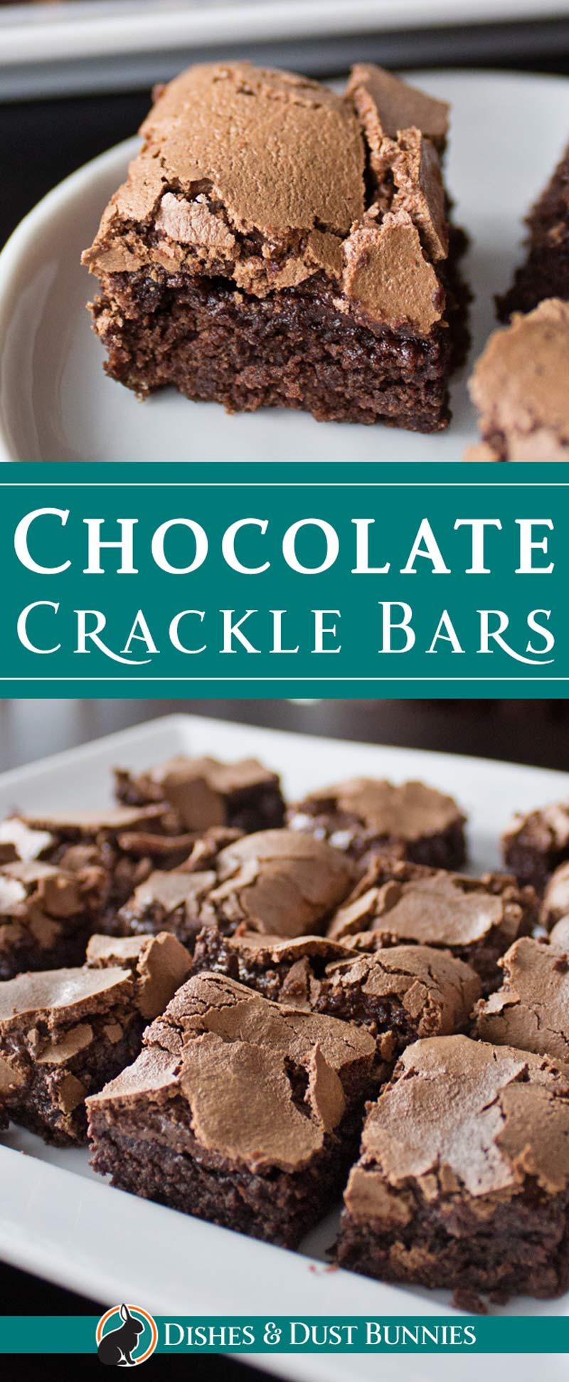 Chocolate Crackle Bars from dishesanddustbunnies.com