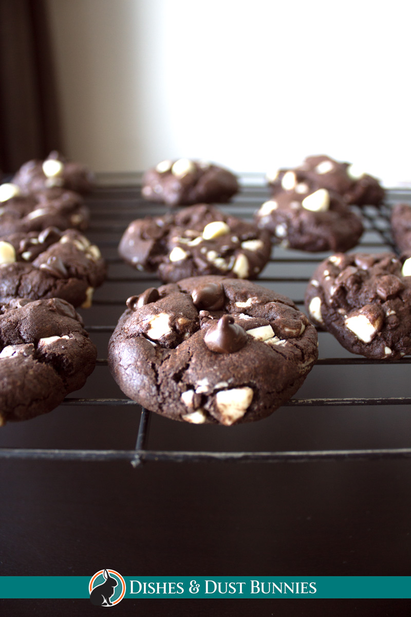 Triple Chocolate Cookies - dishesanddustbunnies.com