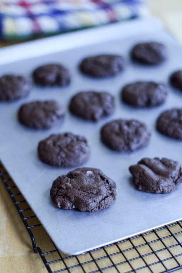 The chocolate cookies on a cookie sheet
