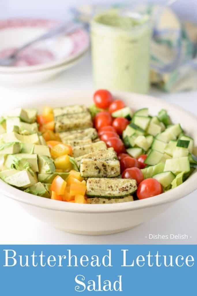 Boston Lettuce Salad for Pinterest 2