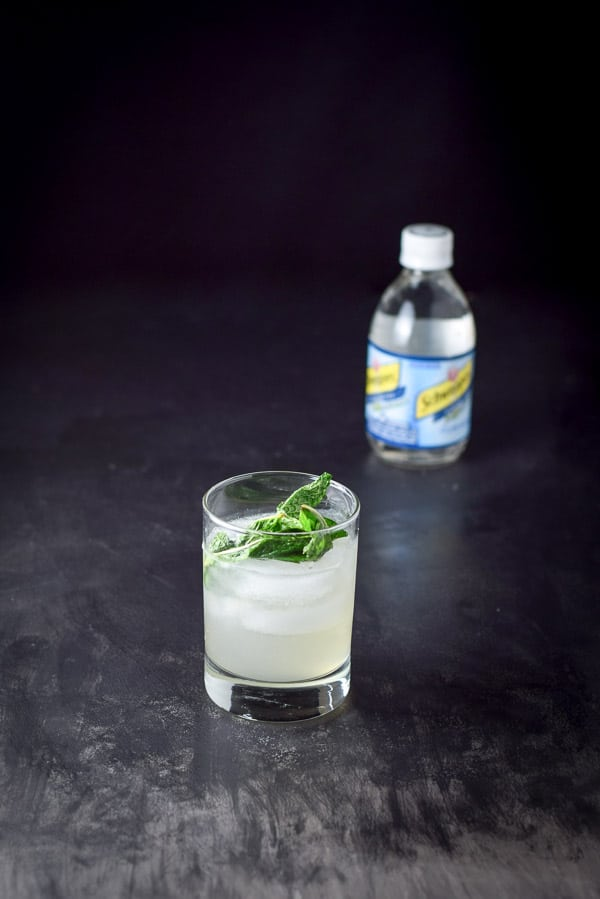 The shaken ingredients in the glass with ice and mint on top and club soda in the background