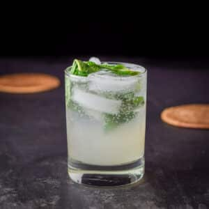 Square photo of the double old fashioned filled with a minty drink