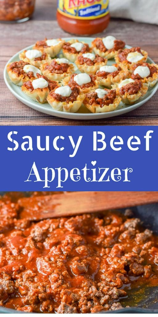 Saucy Beef Appetizers for Pinterest