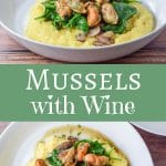 Mussels with Wine Sauce