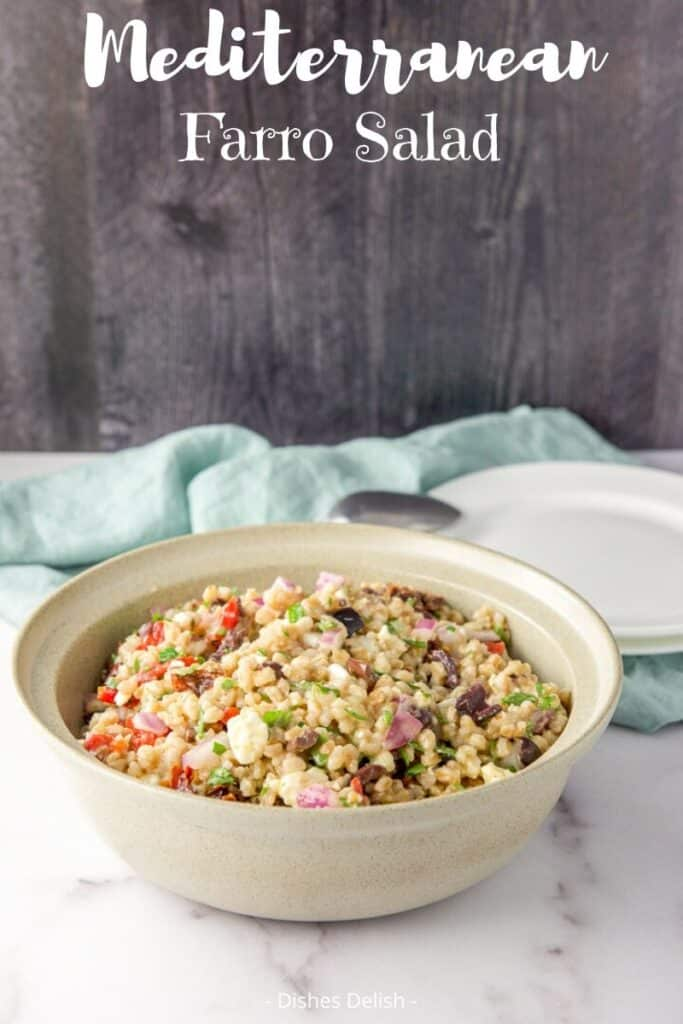 Farro Salad for Pinterest 5