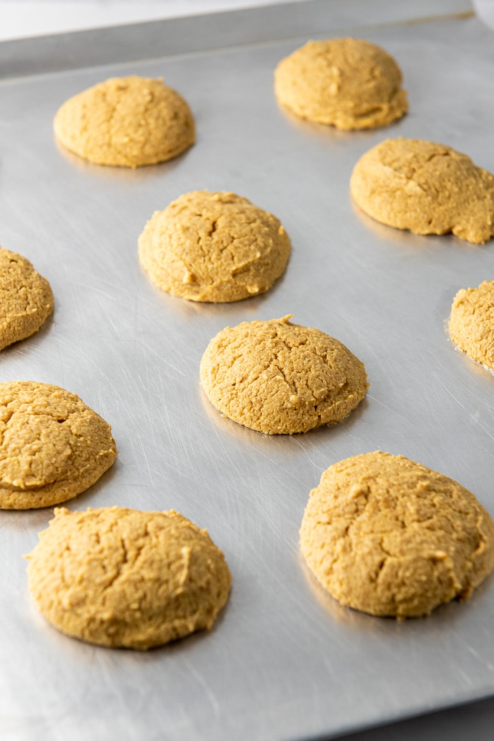 Pumpkin cookies fresh out of the oven still on the cookie sheet