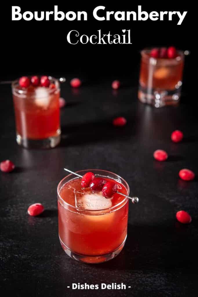 Bourbon Cranberry Cocktail for Pinterest 3
