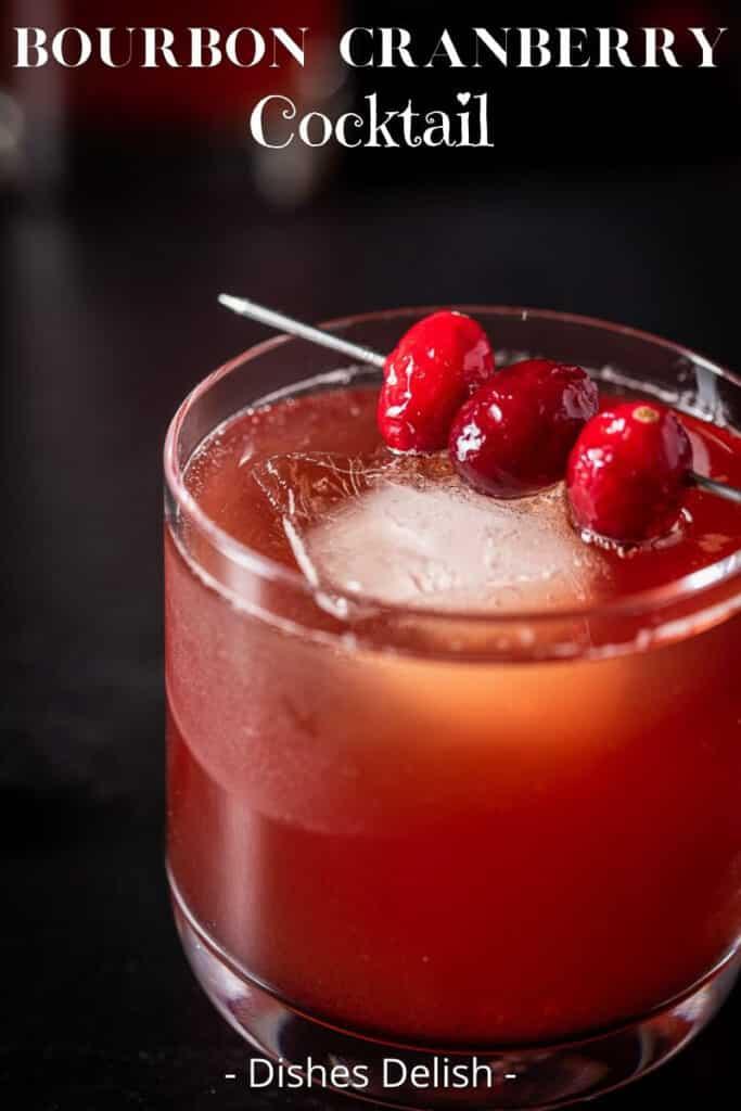Bourbon Cranberry Cocktail for Pinterest 4