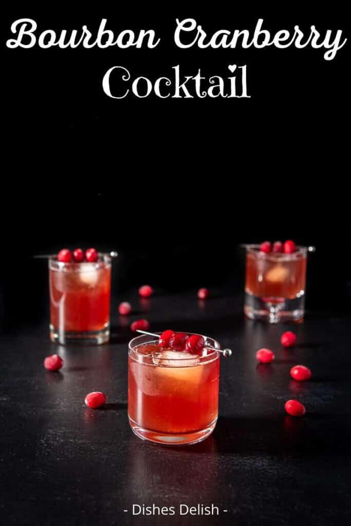 Bourbon Cranberry Cocktail for Pinterest 5