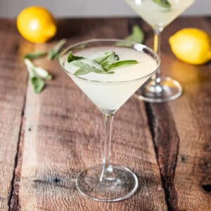 Classic martini glass filled with the limoncello martini - square