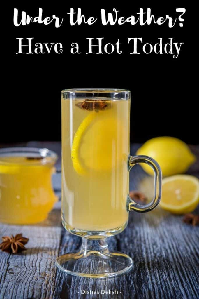 Hot Toddy Recipe for Pinterest 5