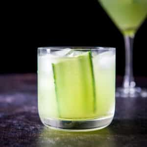 head on view of a double old fashioned glass filled with the gimlet and the martini glass in the back