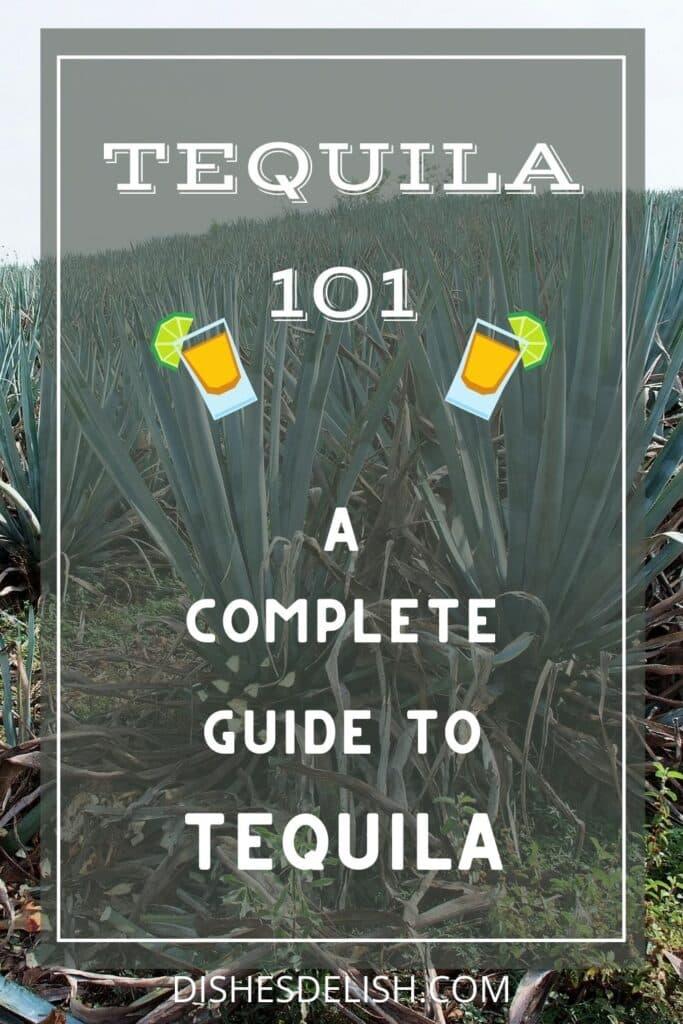Tequila 101 for Pinterest 1