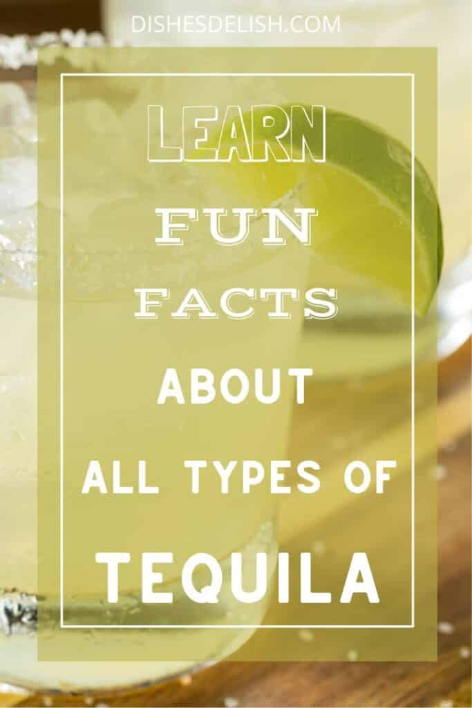 Tequila 101 for Pinterest 2