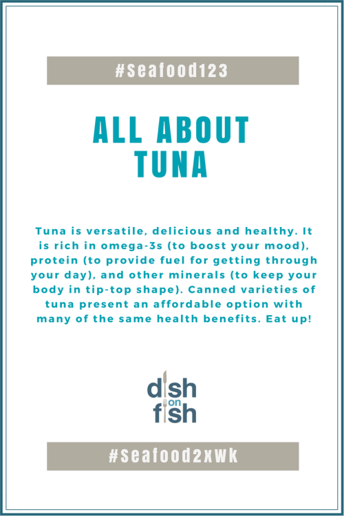 All About Tuna