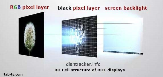 BD Cell Display Technology Explained
