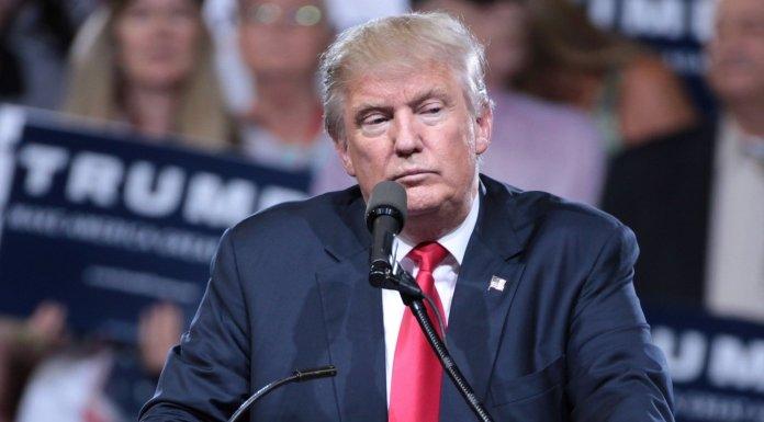 Cómo Donald Trump humilló a los señoritos de ciudad