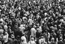 Encuestas con trampa: ¿miden o manipulan la opinión pública?