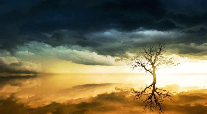Suicidarnos por miedo a morir del cambio climático