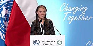 Greta, la terrorífica mascota del COP24
