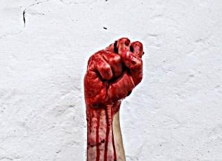 La llamada ley vasca de abusos policiales o cuando una investidura no vale un Estado de Derecho