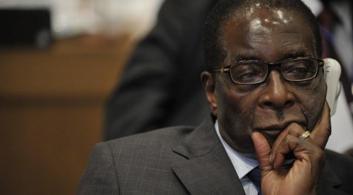 Hasta nunca, Mugabe