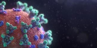 COVID-19: Mecanismos de infección y posibles tratamientos