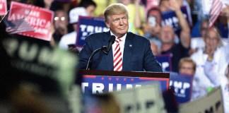 Trump y los cisnes negros