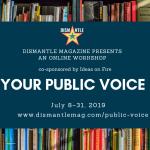 Your Public Voice workshop