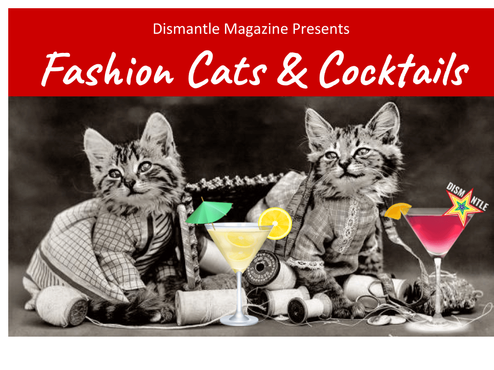 black and white photo of cats in dresses with colorful cocktails. Text reads fashion cats & cocktails