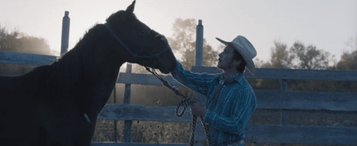 Image from The rider of a young man in cowboy hat petting a horse