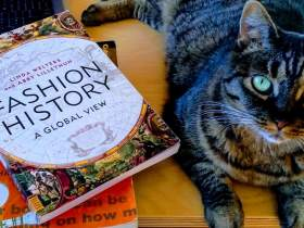 fashion studies textbooks and a cat