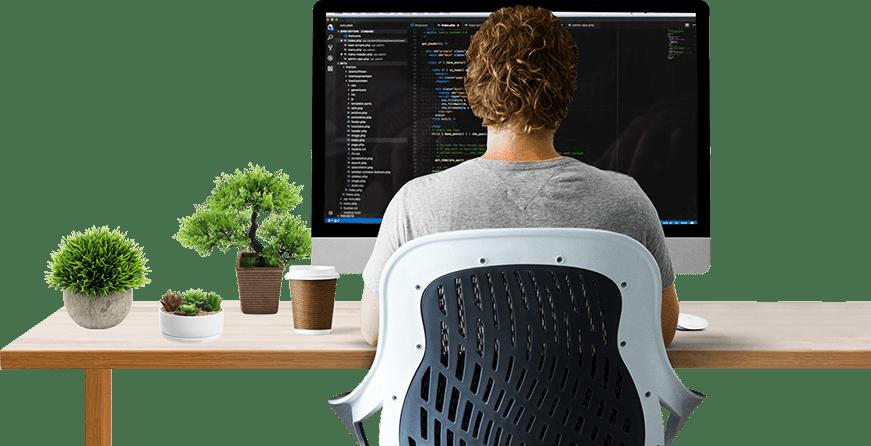 programador web freelancer wordpress