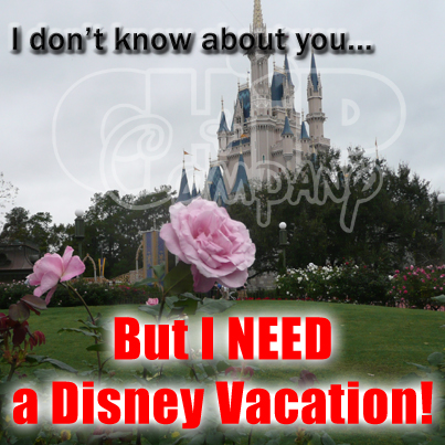 Which Disney World Resorts have the Best Accessible Rooms and Common Areas?