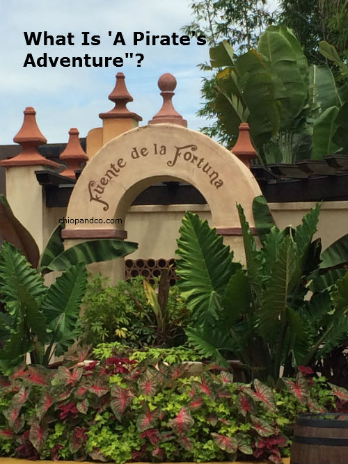 What is 'A Pirate's Adventure-Treasures of the Seven Seas'?