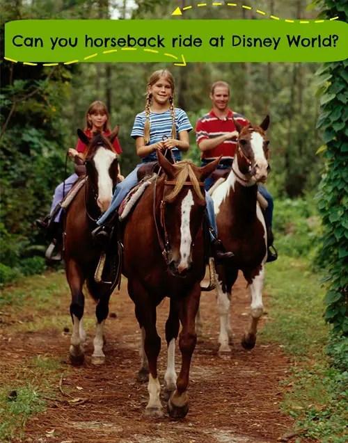 Can you horseback ride at Disney World?