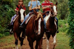 Can you horseback ride at Disney World? 3