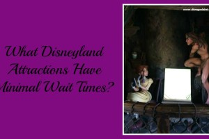 What Disneyland Attractions Have Minimal Wait Times? 6