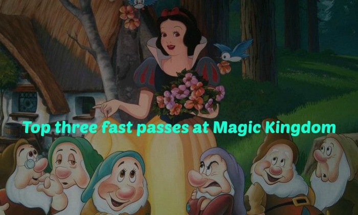 Top 3 Fastpass selections at the Magic Kingdom