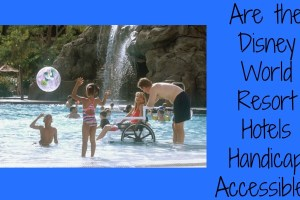 Are the Disney World Resort Hotels Handicap Accessible? 11