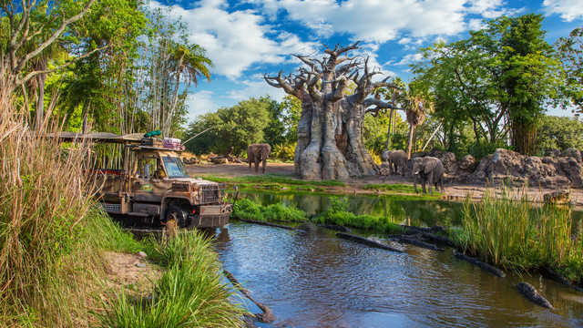 20 Things We Love About Disney's Animal Kingdom on Its 20th Anniversary 1