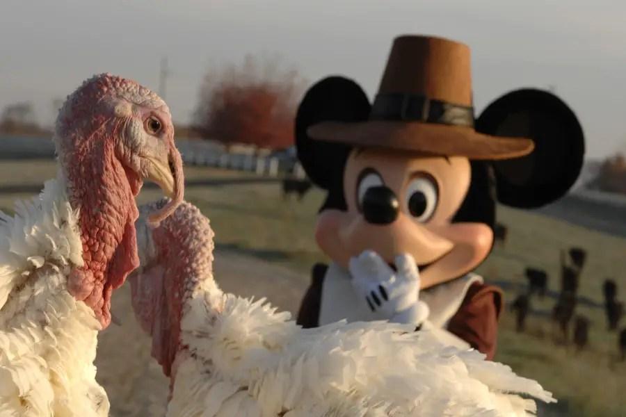 What Restaurants at Disney World Will Offer Thanksgiving Dinner?