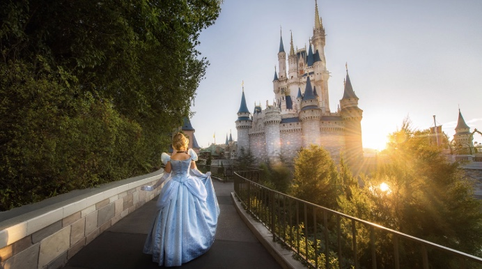 How Can I Spend the Night in Cinderella Castle?