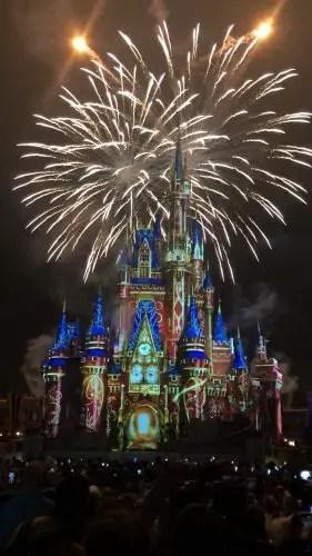 How Do You Propose at Walt Disney World? 4