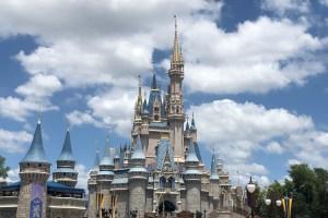 Top 7 Tips For Doing Magic Kingdom Like A Pro 41