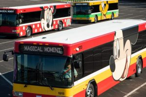 How Early In the Morning Do WDW Resort Buses Start Heading to the Theme Parks? 32