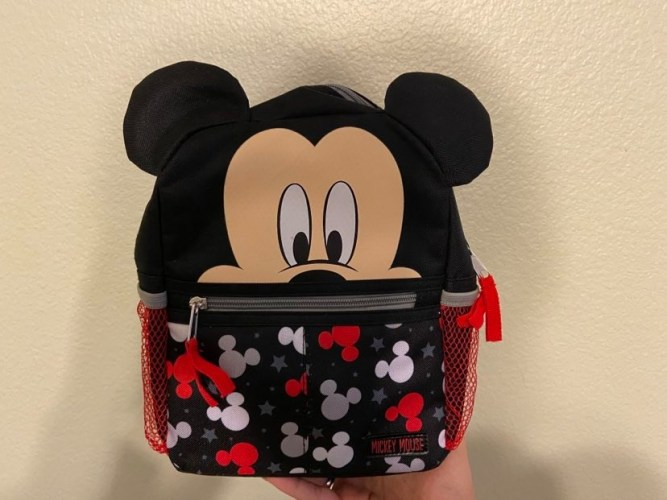 What to Pack for My Disney World Vacation? 4