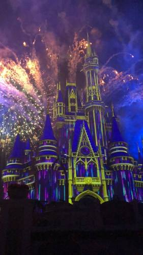 The Things We are Looking Forward to the Most When Disney Re-opens 7
