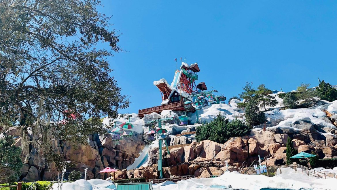 Why We Love Disney's Blizzard Beach Water Park