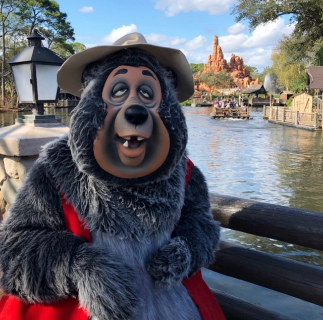 Country Bear Jamboree: Fun Facts About the Frontierland Favorite 6